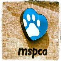Photo taken at MSPCA Adoption Center by Eric on 7/28/2012