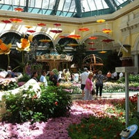 Photo taken at Bellagio Conservatory & Botanical Gardens by RiCHMOND on 5/2/2012