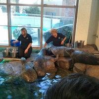 Maritime Aquarium South Norwalk 67 Tips From 4653 Visitors