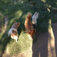 Photo taken at Balboa Park Dog Park by Roger M. on 6/25/2012