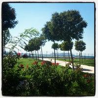 9/9/2012 tarihinde İbrahim Ö.ziyaretçi tarafından Maltepe Sahili'de çekilen fotoğraf