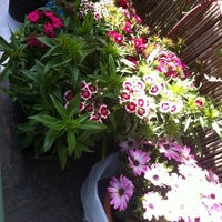 Foto scattata a Bagni Germana da ValeYellow46Forever T. il 8/22/2012
