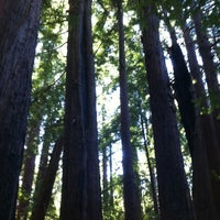 Photo taken at Pfeiffer Big Sur State Park by Alexander S. on 8/20/2012