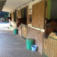 8/24/2012 tarihinde Erkan K.ziyaretçi tarafından Gürman At Çiftliği'de çekilen fotoğraf