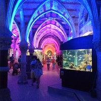 Photo taken at Sealife Centre by Jon B. on 8/21/2012