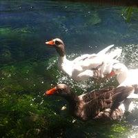 8/25/2012 tarihinde Hakan E.ziyaretçi tarafından Kordon Restaurant'de çekilen fotoğraf