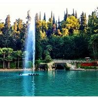 Photo taken at Parco Termale Villa dei Cedri by Robert M. on 6/26/2012