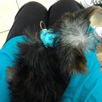 Photo taken at Madison Veterinary Hospital by Jessica on 6/14/2012