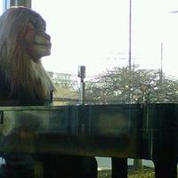 Photo taken at McDonald's by Scott B. on 3/19/2012