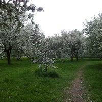 Снимок сделан в Яблоневый сад пользователем Elena G. 5/14/2012