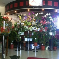 Photo taken at Kubra International Flowers Shop by Kübra🌀 on 9/3/2012