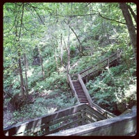 Photo taken at Devil's Millhopper Geological State Park by Chris P. on 7/21/2012