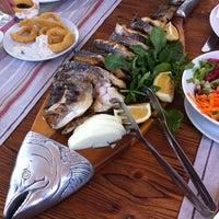 8/20/2012 tarihinde Pelin S.ziyaretçi tarafından Tirilye Balık Restorant'de çekilen fotoğraf