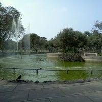 Foto tomada en Bosque El Olivar por Carlos C. el 11/9/2011