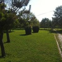 Photo taken at Sivas by Sahin on 7/7/2012