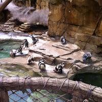 Photo taken at Akron Zoo by Jim C. on 8/18/2011