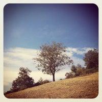 Photo taken at La mia collina by Emilyk77 on 10/8/2011