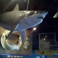 Photo taken at Iguanas Seafood Restaurant by Shawn T. on 9/24/2011