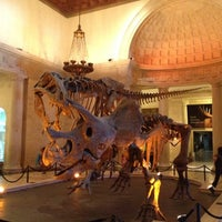 Photo taken at Natural History Museum of Los Angeles County by Obryan R. on 6/23/2012