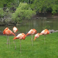 Photo taken at Milwaukee County Zoo by Shem B. on 5/12/2012
