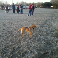 Photo taken at Baron Cameron Dog Park by Raul L. on 2/3/2012