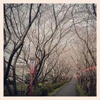 Photo taken at Kita Ward Office by Satoshi S. on 4/4/2012