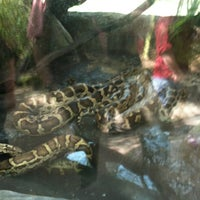 Photo taken at Indian Python by Da Mayor on 4/8/2012