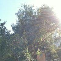 Photo taken at Parque Nacional La Campana by Nicolas A. on 2/21/2012