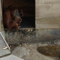 Photo taken at Monkey Island Flagpole by Jennifer R. on 7/10/2012