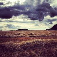 Снимок сделан в Sherwood Forest National Nature Reserve пользователем José P. 9/2/2012