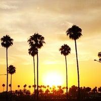 Edwards Big Newport Beach Ca