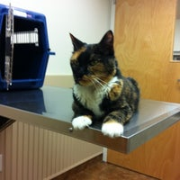 Photo taken at North Windham Veterinary Hospital by beckie l. on 3/28/2012