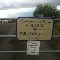 Photo taken at Lavender Farm by Corey D. on 8/20/2012