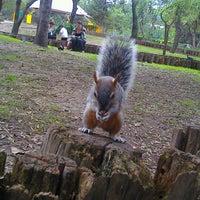 Photo taken at Parque Ecológico Los Coyotes by Hugo G. on 9/11/2012
