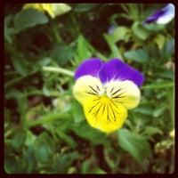 Das Foto wurde bei Morningside Nature Preserve von Mike N. am 4/16/2012 aufgenommen
