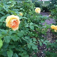 Photo taken at Rose Garden by Ally N. on 5/10/2012