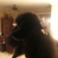 12/10/2011にJustin P.がThe Tiki Hutで撮った写真