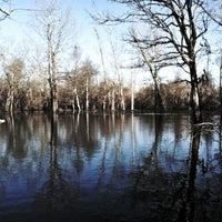 Foto scattata a Lost Island Duck Hunting da Chris C. il 5/12/2012