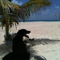 Photo taken at Playa Xaman-Ha by Pachona A. on 7/12/2012
