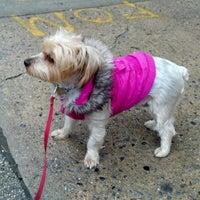 Photo taken at Church Avenue - Brooklyn by Jason G. on 1/27/2012