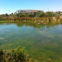 Photo taken at Biodiversity Gardens by Beverley A. on 2/27/2012