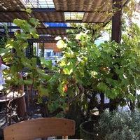 Foto tomada en Gallito por Marta M. el 8/24/2012