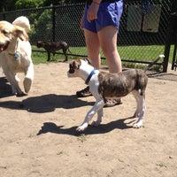 Photo taken at Newton Street Dog Park by Alyssa on 6/17/2012
