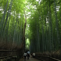 Photo taken at Arashiyama Bamboo Grove by macaron on 7/7/2012
