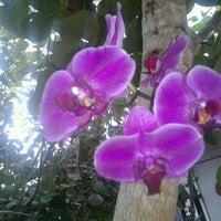 Foto tirada no(a) Pousada Quinta dos Quintais por Gisela M. em 4/28/2012