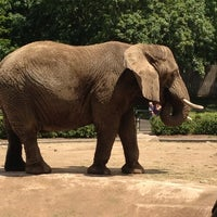 Photo taken at Milwaukee County Zoo by Cody F. on 6/16/2012