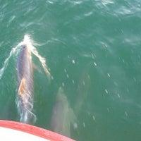 Photo taken at Island Time Cruises Paddlewheel Boat by David H. on 3/23/2012
