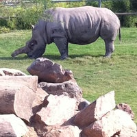 Photo taken at Reid Park Zoo by Elizabeth A. on 10/2/2011