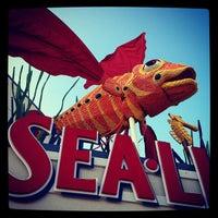 Photo taken at SEA LIFE Aquarium by Visit San Diego on 11/16/2011
