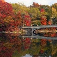 Photo taken at Bow Bridge by Jeff W. on 9/23/2011